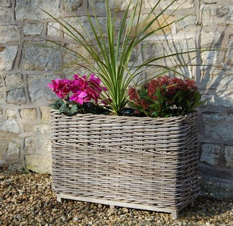 Willow Planters Uk by Large Willow Trough Basket Planter L79cm 163 69 99