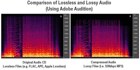 format audio lossless picking earphones and speakers a guide to better audio