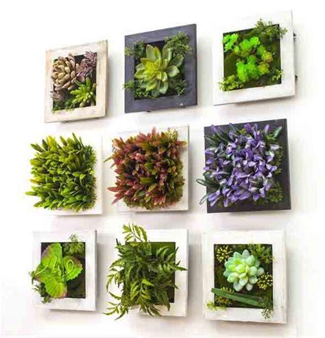 fazer plantas fazer quadros vivo de plantas para decorar