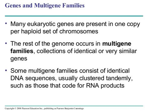 Many Rna Molecules From Eukaryotic Genes Sections Called by Chapter 21 Presentation Textbook