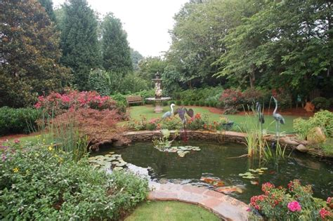 garden pond ideas     feel relaxed