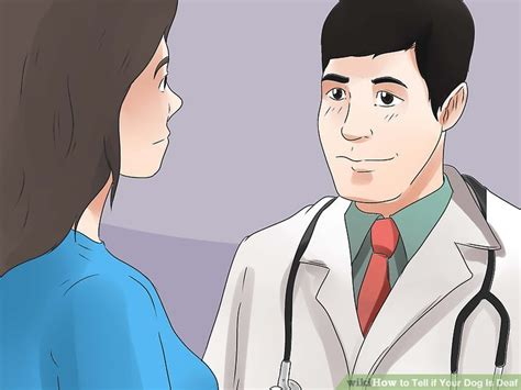 how to tell if your puppy is deaf 3 ways to tell if your is deaf wikihow