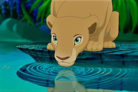 lion king nala bedroom eyes lion king nala bedroom eyes 28 images 17 best images
