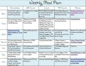 paleo diet weekly plan search results calendar 2015