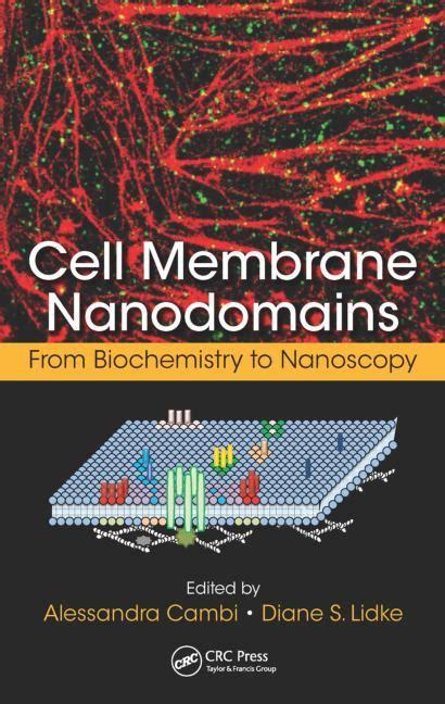 cell membrane nanodomains  biochemistry  nanoscopy