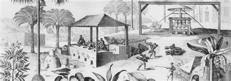 Records Jamaica Slavery In Jamaica Records From A Family Of Owners