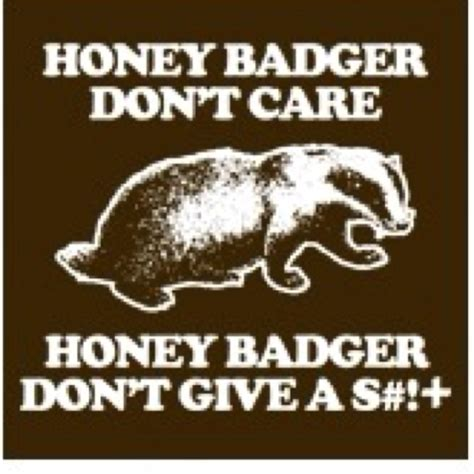 Honey Badger Don T Care Meme - honey badger don care good times pinterest