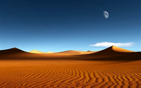 Nel Images by Wallpapers Desert Wallpapers