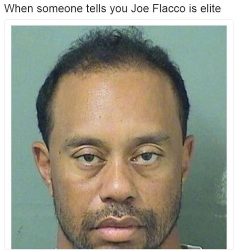How To See Someones Arrest Record When Someone Tells You Joe Flacco Is Elite Tiger Woods Mugshot Your Meme