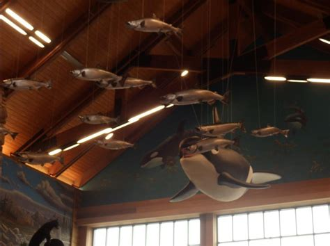 cabelas marysville boats first look inside new tulalip cabela s