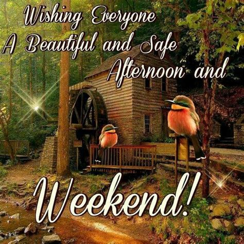 wishing   beautiful  safe afternoon  weekend pictures   images