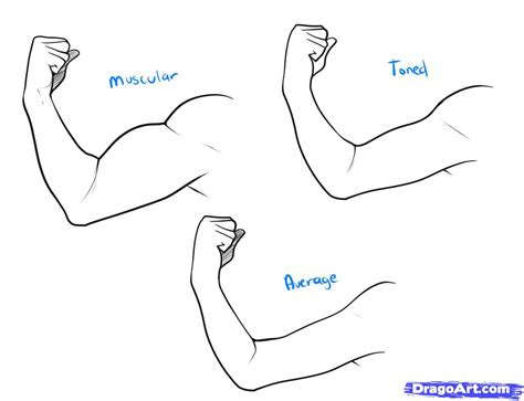 How To Draw A Step By Step Anatomy Free