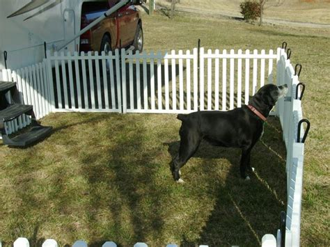 rete da giardino per cani recinzioni per cani recinzioni giardino recinti per