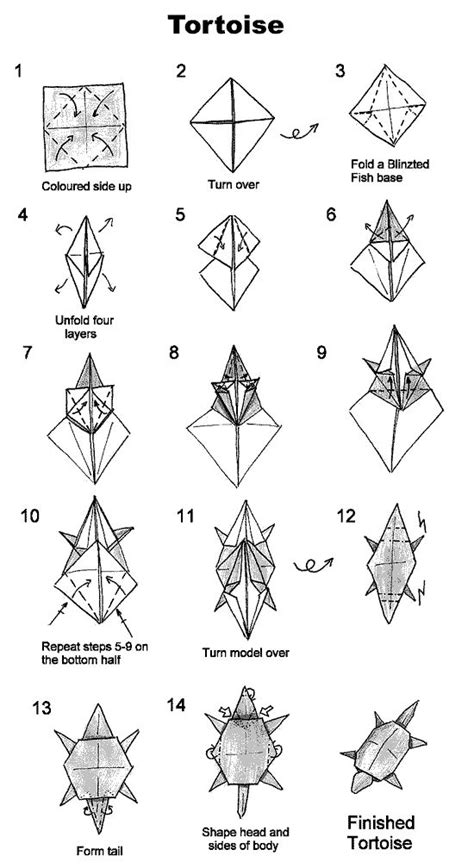 Origami Turtle Diagram - 1000 images about dino origami on money