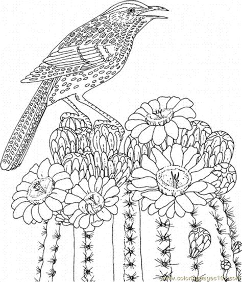 cactus coloring pages coloring home