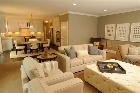 hgtv living room designs decor ideasdecor ideas