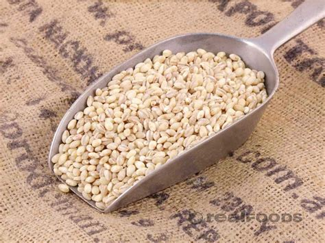 whole grains with low carbs grains for a low carb diet steroidology
