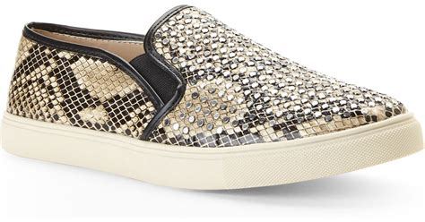 snake print slip on sneakers steve madden snake print slip on sneakers in lyst