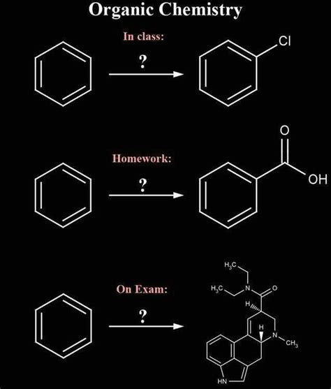 Funny Organic Chemistry Memes - 25 best ideas about organic chemistry humor on pinterest