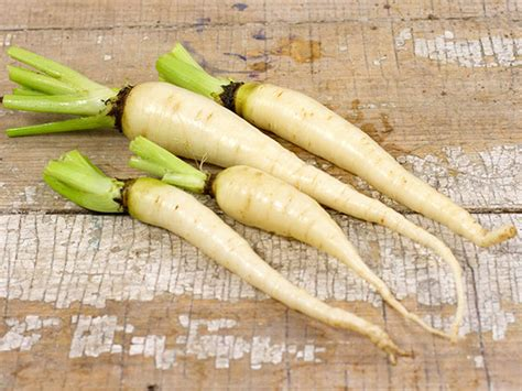 Carrot, Snow White   Baker Creek Heirloom Seeds