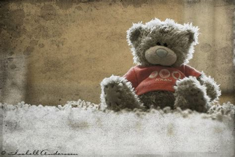 by teddy linenfelser 2016 the 3rd minecraft news network teddy bear wallpapers