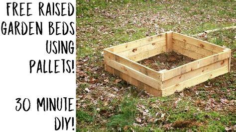 raised garden beds  pallets  lil garden