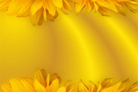for yellow free illustration background yellow floral free image