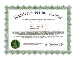 Get Your Dog Certified As A Therapy Dog templates certificate page 2 search results calendar 2015