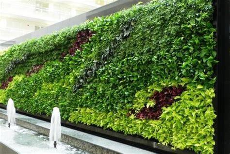 vertical garden  bio wall service manufacturer rs