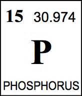 the arbor chronicle environmental indicators phosphorus