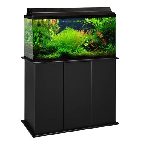 Stand Galon aquarium stand 50 gallon box 50 gallon showpiece