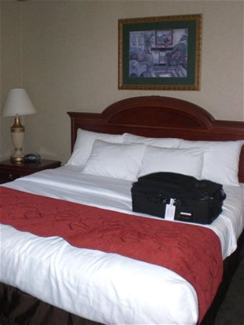 comfort inn bedding comfortable bed and bedding great pillows too picture