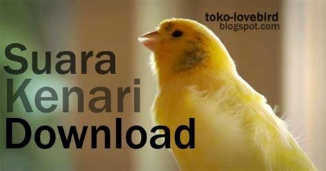 Jual Pakan Burung Import suara kenari mp3 buat masteran terlengkap