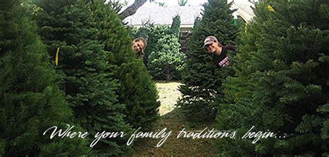 carroll s country christmas tree farm u cut or pre cut