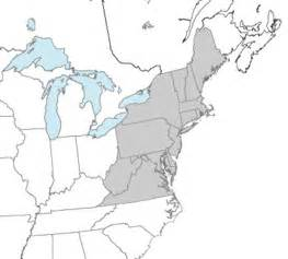 northeast us airports map northeast states and capitals quiz label northeastern us