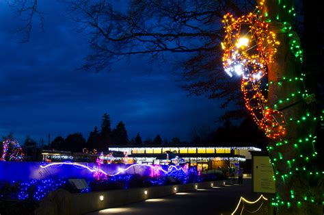 Wildlights Woodland Park Zoo Seattle Wa Zoo Lights Woodland Park