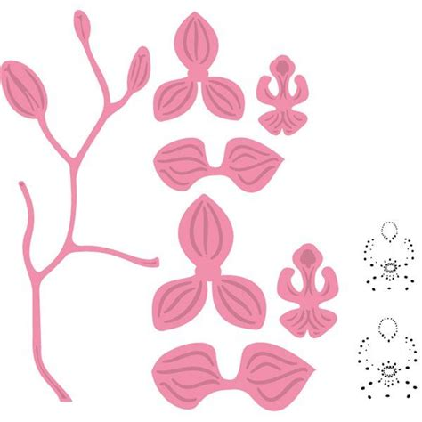 paper cutting card orchid template col 1379 orchid svg cricut cutting