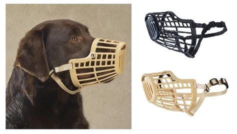 basket muzzle basket muzzle for dogs that bite or bark plastic designed to fit ebay