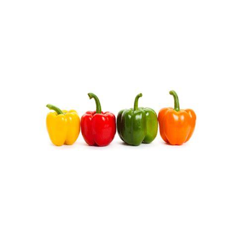 Mini Bell Tomato Seed organic mini bell pepper seeds seed bank