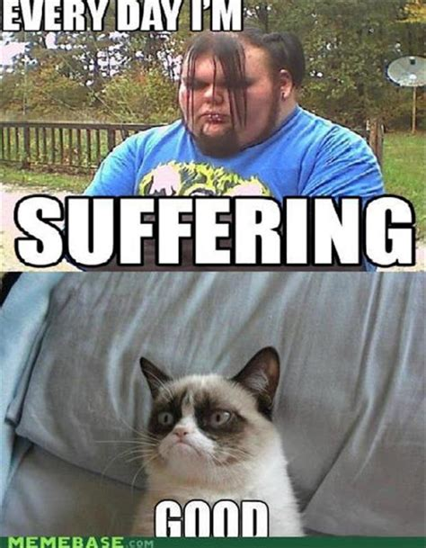 Angry Cat Meme Good - crazy lazy silly and strange grumpy cat