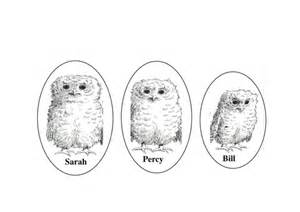owl babies sequencing speech bubbles and puppet by