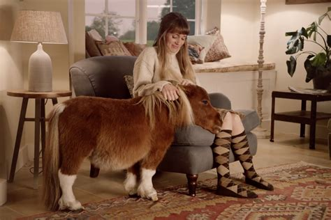 Amazon Commercial Actress Horse | amazon prime s little horse is cutest christmas advert of