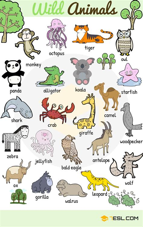 new year animal names useful animals vocabulary from 7esl teaching