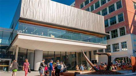 Top 10 Mba Colleges In New Zealand by Of Wellington Tean Study Abroad