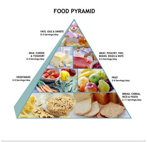 poster print wall art entitled food pyramid ebay