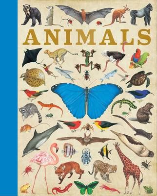 animals by camilla de la bedoyere buy books at lovereading4kids co uk
