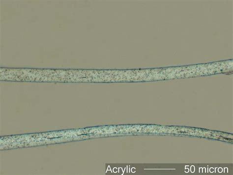 Acrylic Fiber acrylic fiber the microscope