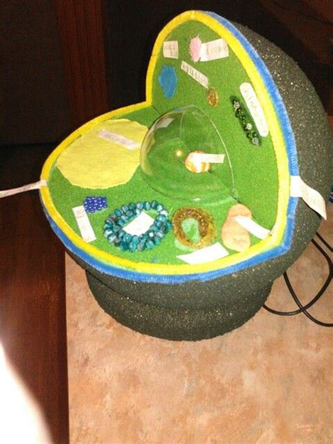 Handmade Science Models - plant cell model 5th grade science project amanda plant