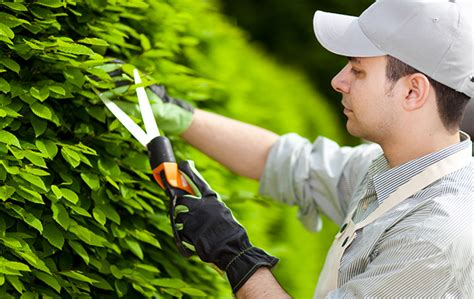 Gardeners Of by Gardener Twinlakes