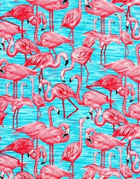 flamingo print wallpaper timeless treasures fun pink flamingo fabric 1 yard